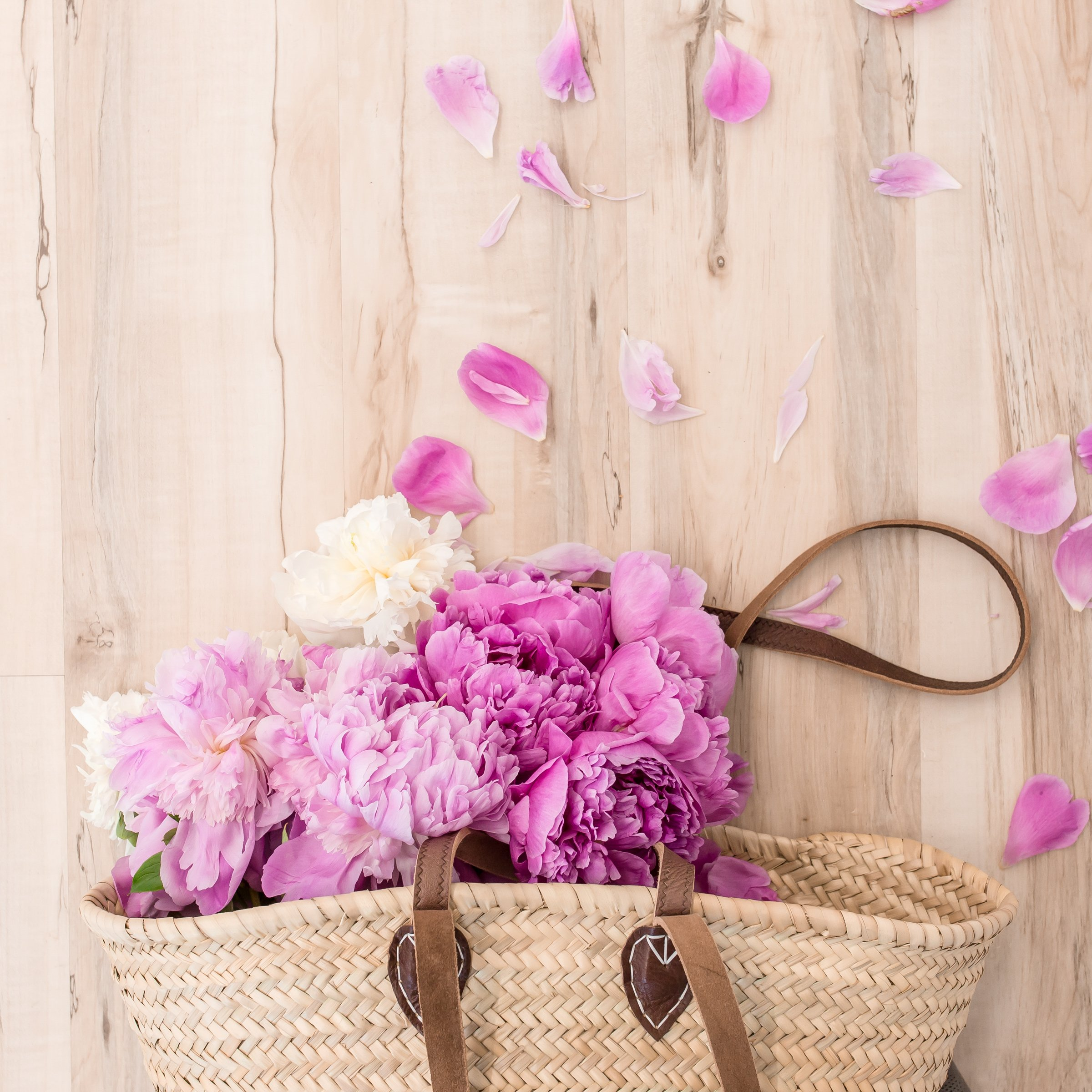 haute-stock-photography-all-the-pink-final-18